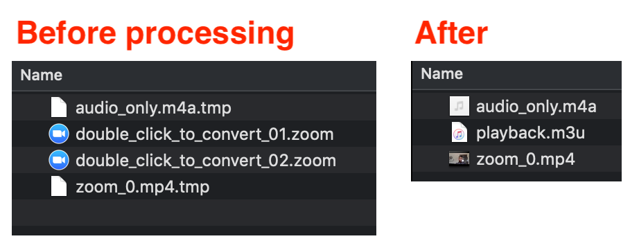 zoom processing files